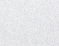 Acoustic Plaster And Acoustic Spray Seamless Ceilings