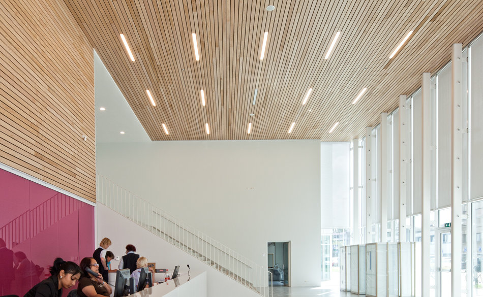Timber acoustic panels and suspended timber ceilings - Wood slat ceiling system ...
